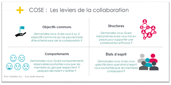 Cose - Les leviers de la collaboration
